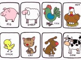 animales en inglés