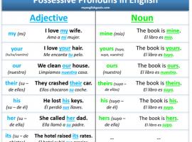 pronombres posesivos en ingles